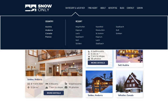 Snow Only Website UI Design